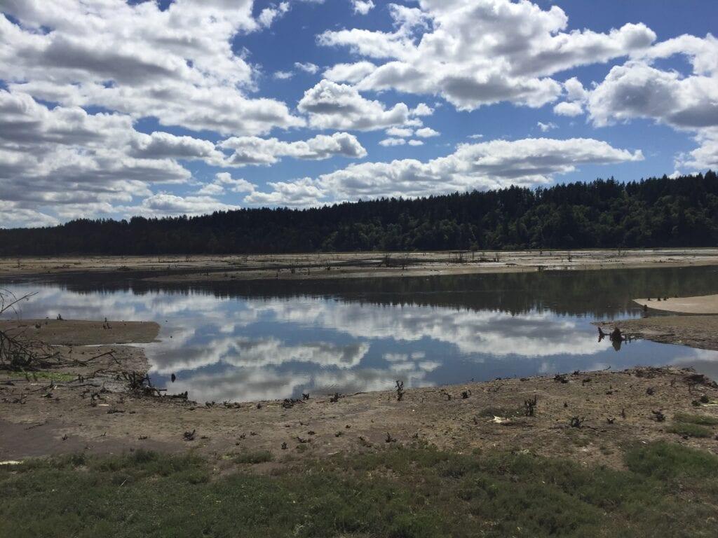 Nisqually Wildlife Refuge, Washington, USA