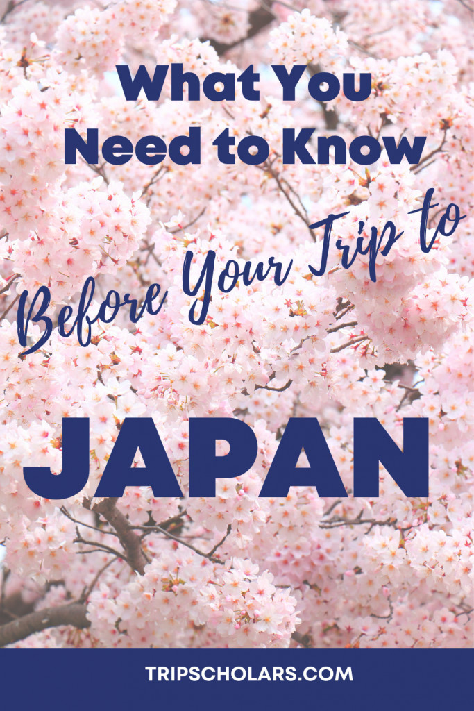 What You Need to Know Image: cherry blossoms in Japan Before Your Trip to Japan