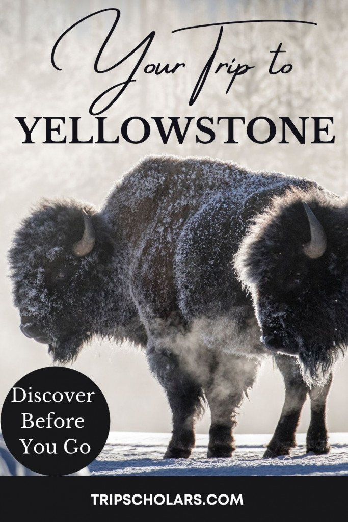 Your trip to Yellowstone National Park can be one of your most treasured life experiences! Enjoy planning your Yellowstone National Park vacation and learning about the park before you leave. We have gathered the best resources here to save you time and improve your trip. Find documentaries for every interest, books, websites, games, podcasts, and more! We've got free resources and those that are perfect for Yellowstone with kids. Learn about how to craft your perfect Yellowstone Itinerary.