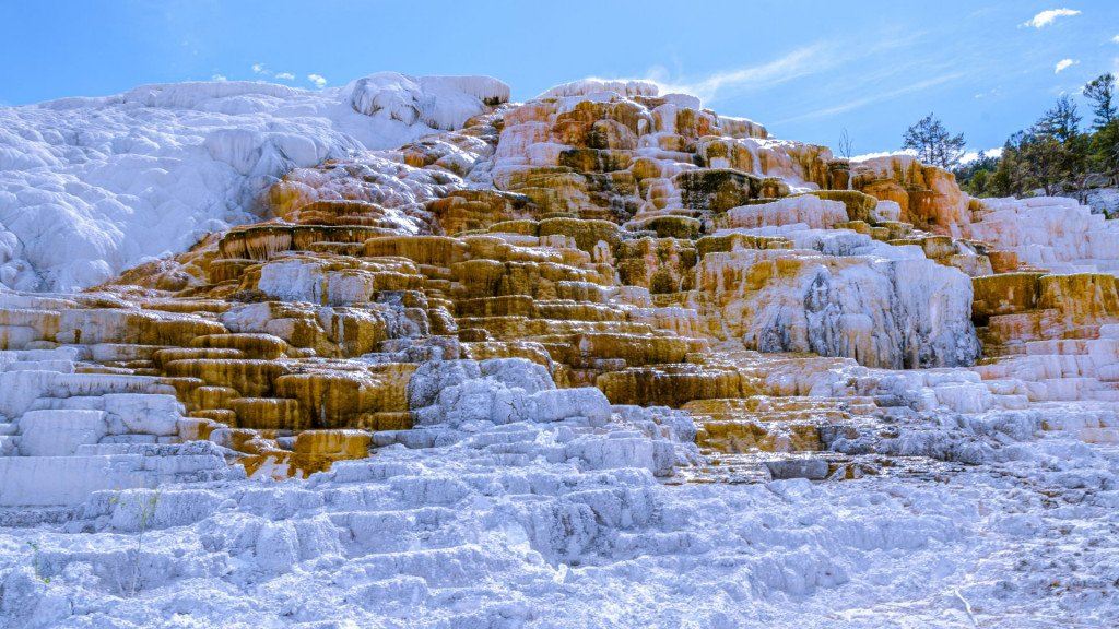 Planning a trip to Yellowstone, Mammoth Hot Springs Travertine Terraces